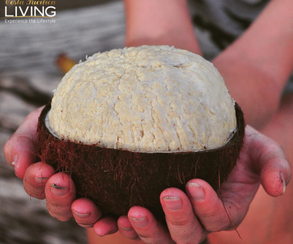 Holding a coconut in your hand