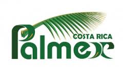 Palmex logo | Costa Pacifica LIVING