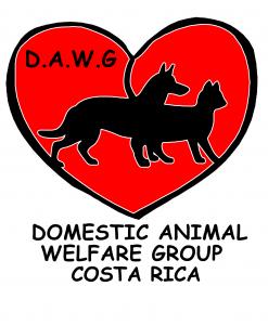 DAWG Uvita Costa Rica logo | Costa Pacifica LIVING