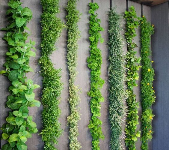 Green walls inspiration