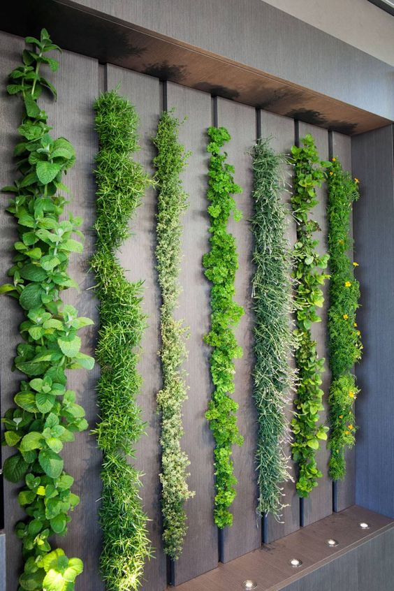 Green walls inspiration