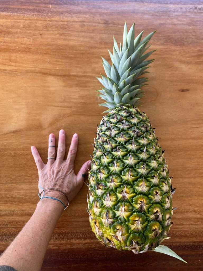 Homegrown pineapple in Costa Rica - Photo by Karolina Svoboda