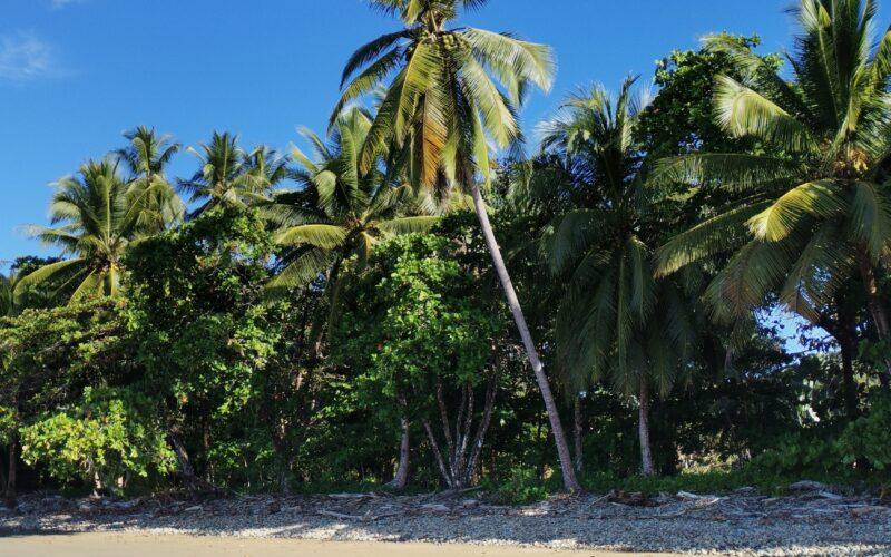 Beach time in Costa Rica - Photo by Nikki Whelan